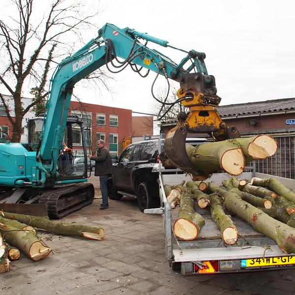 boom-rooien-leidschendam-voorburg-den-haag-wassenaar-003
