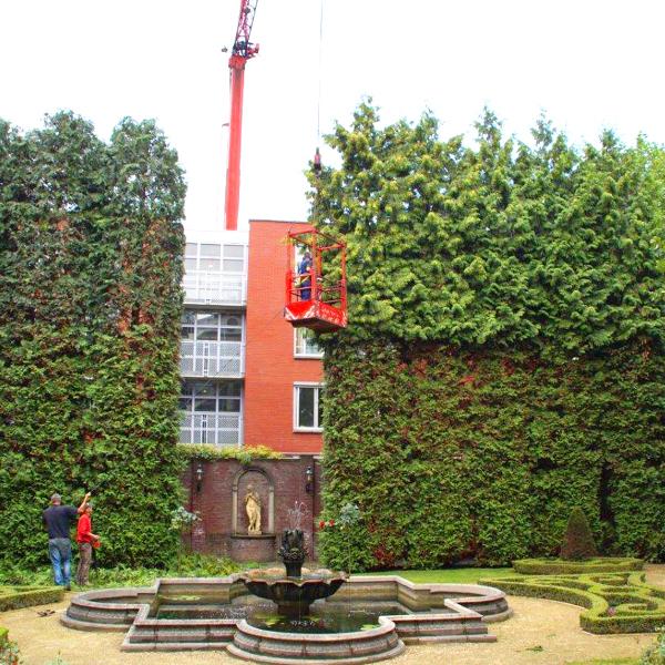 hovenier-leidschendam-voorburg-den-haag-wassenaar-049